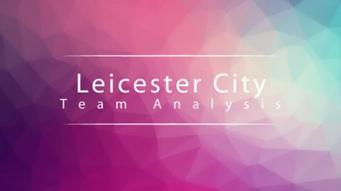Team analysis Leicester